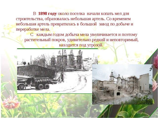 В 1898 году около поселка начали копать мел для строительства, образовалась...
