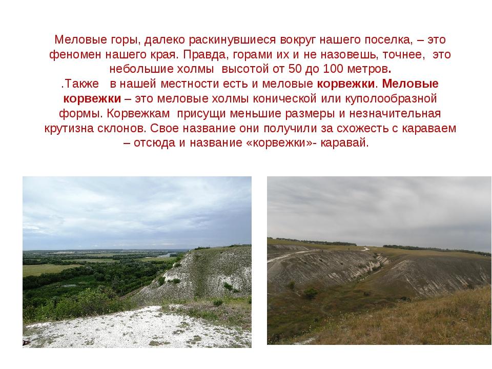 Меловые горы, далеко раскинувшиеся вокруг нашего поселка, – это феномен нашег...