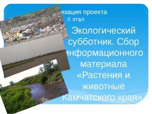 Реализация проекта II этап Экологический субботник. Сбор информационного мате