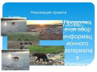 Реализация проекта III этап Сбор информационного материала «Причины экологиче