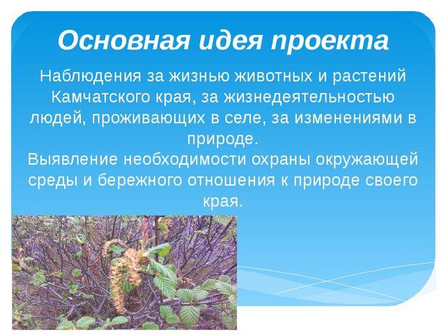 Основная идея проекта Наблюдения за жизнью животных и растений Камчатского кр...
