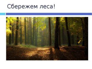 Сбережем леса!