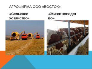 «Сельское хозяйство» «Животноводство» АГРОФИРМА ООО «ВОСТОК»