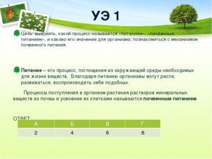 УЭ 1 Цель: выяснить, какой процесс называется «питанием», «почвенным питанием