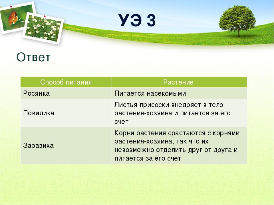 УЭ 3 Ответ Способ питания Растение Росянка Питается насекомыми Повилика Листь...
