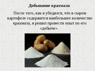 Добывание крахмала После того, как я убедился, что в сыром картофеле содержит