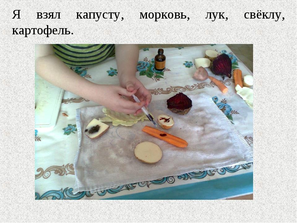 Я взял капусту, морковь, лук, свёклу, картофель.