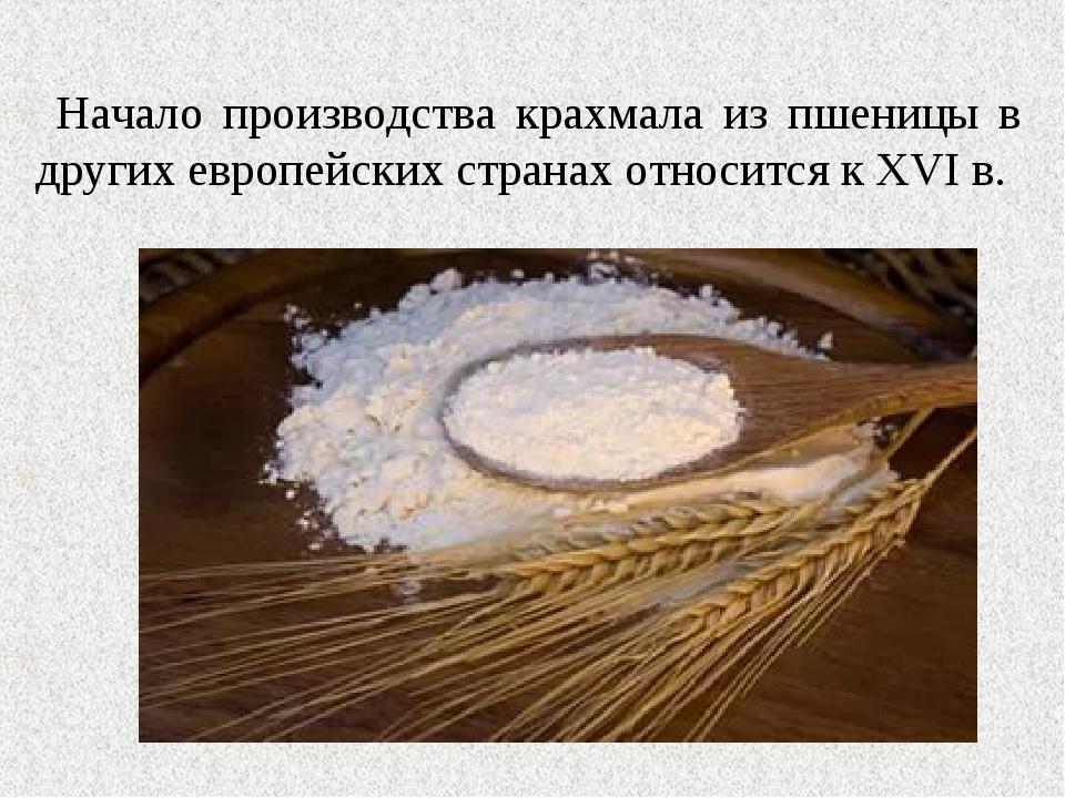 Начало производства крахмала из пшеницы в других европейских странах относит...