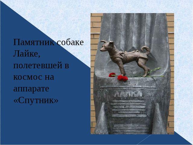 Памятник собаке Лайке, полетевшей в космос на аппарате «Спутник»
