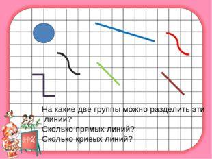 На какие две группы можно разделить эти линии? Сколько прямых линий? Сколько