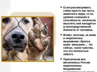 Если рассматривать собак просто как часть животного мира, то по уровню сознан