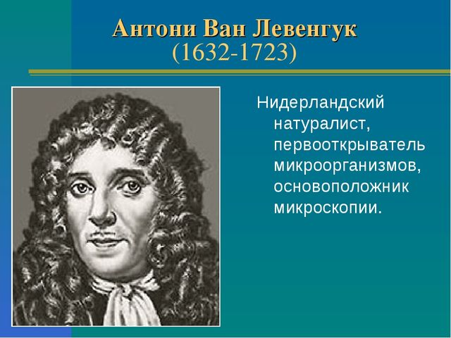 Антони Ван Левенгук (1632-1723) Нидерландский натуралист, первооткрыватель ми...