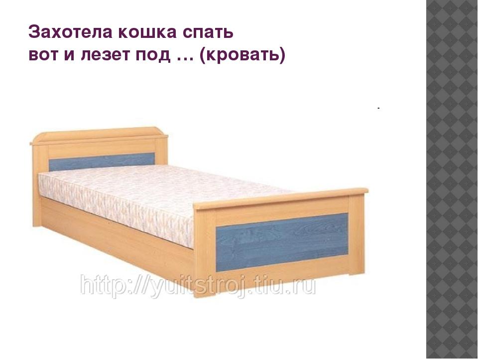 Захотела кошка спать вот и лезет под … (кровать)