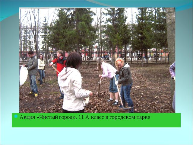 Акция «Чистый город», 11 А класс в городском парке