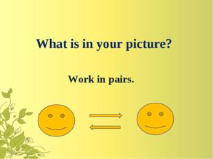 What is in your picture? Work in pairs.