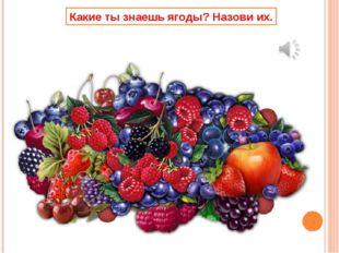 Какие ты знаешь ягоды? Назови их.