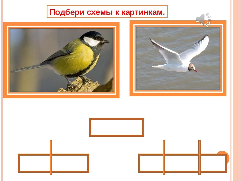 Подбери схемы к картинкам.