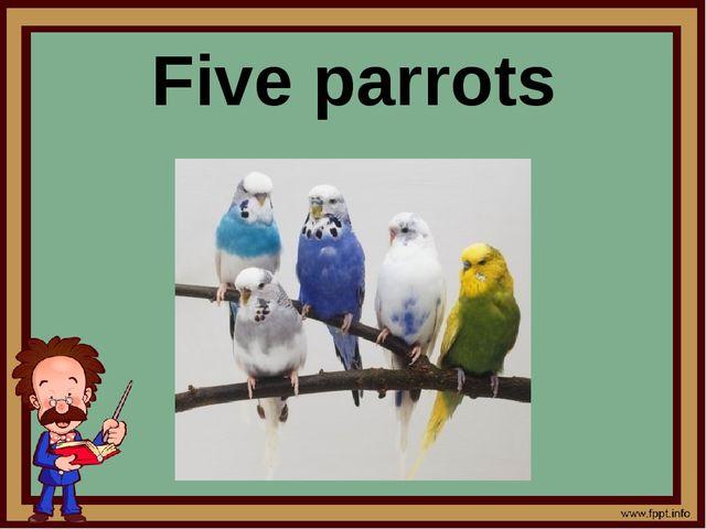 Five parrots