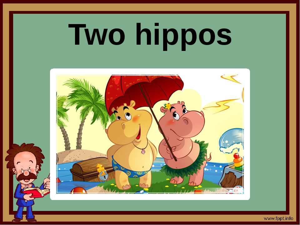 Two hippos