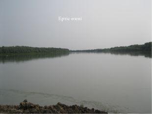 Ертіс өзені