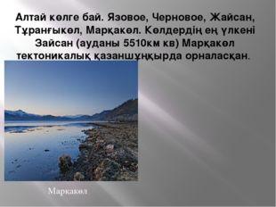 Алтай көлге бай. Язовое, Черновое, Жайсан, Тұранғыкөл, Марқакөл. Көлдердің ең