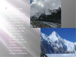 Қазақстандық Алтайдың тауларында 328 мұздықтар бар. Олардың жалпы ауданы 89,6