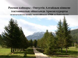 Рахман қайнары - Оңтүстік Алтайдың кішкене тектоникалык ойпатында Арасан куро