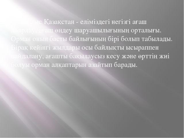 Шығыс Қазақстан - еліміздегі негізгі ағаш даярлау, ағаш өңдеу шаруашылығының...