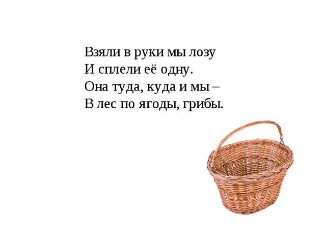 Взяли в руки мы лозу И сплели её одну. Она туда, куда и мы – В лес по ягоды,...