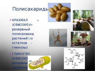 Полисахариды КРАХМАЛ (C6H10O5)n- резервный полисахарид растений(из остатков -