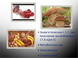 Энергетическая ( 1 г. при окислении высвобождает 17,6 кДж Е) Метаболическая