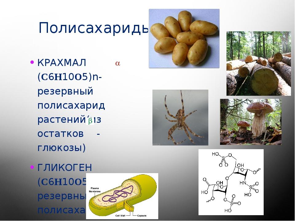 Полисахариды КРАХМАЛ (C6H10O5)n- резервный полисахарид растений(из остатков -...