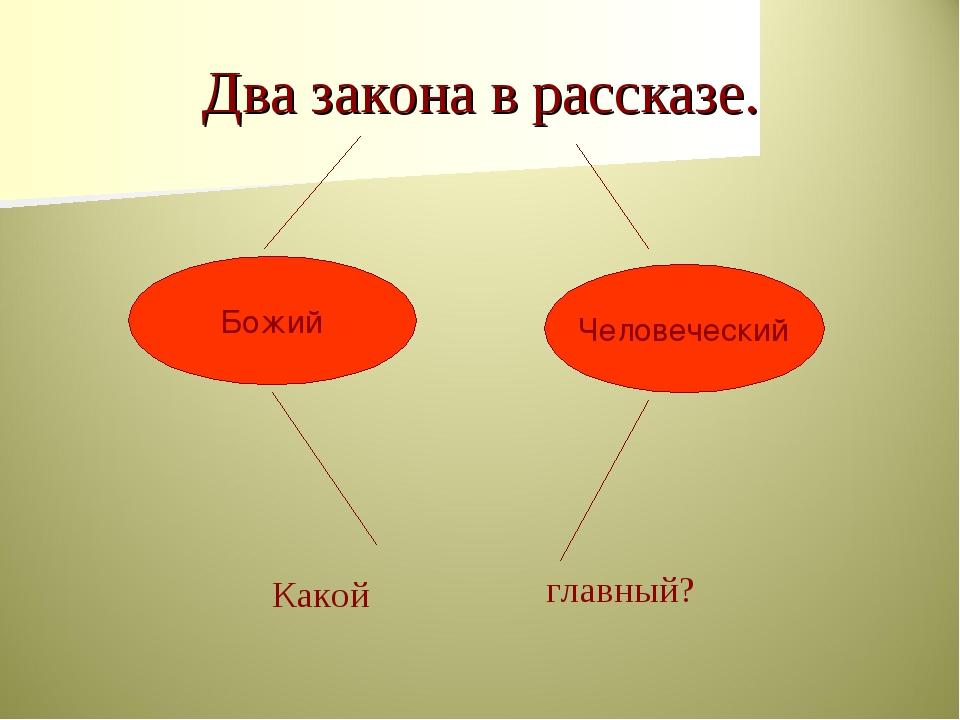 Два закона в рассказе. Какой главный? Божий Человеческий