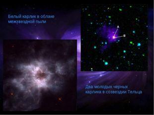 Белый карлик в облаке межзвездной пыли Два молодых черных карлика в созвездии