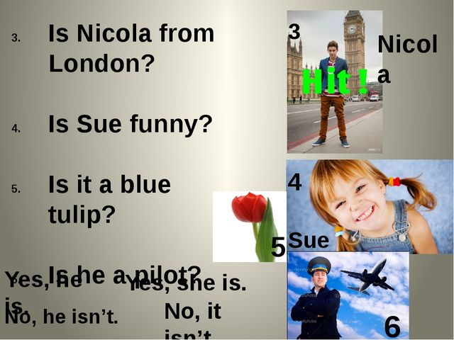 Is Nicola from London? Is Sue funny? Is it a blue tulip? Is he a pilot? Sue N...