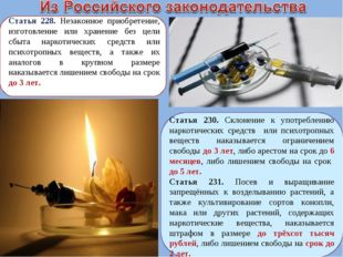 Статья 228. Незаконное приобретение, изготовление или хранение без цели сбыта