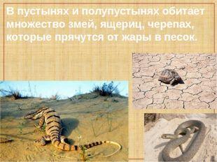 В пустынях и полупустынях обитает множество змей, ящериц, черепах, которые п