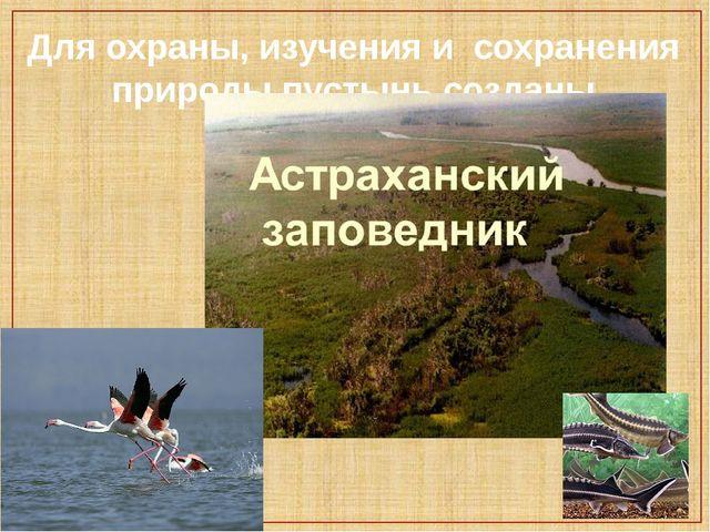 Для охраны, изучения и сохранения природы пустынь созданы заповедники.