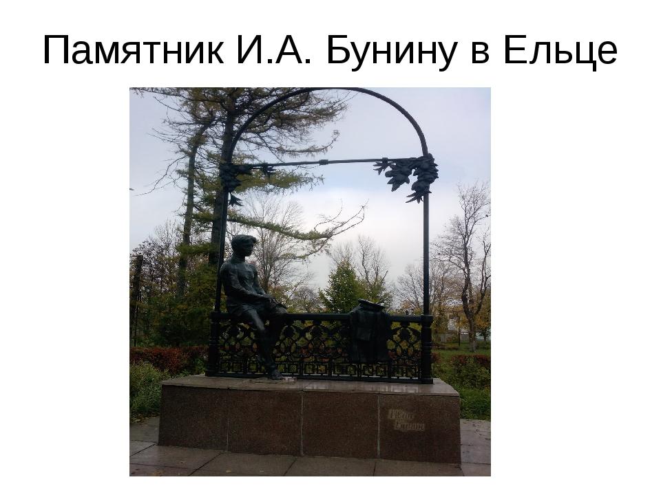 Памятник И.А. Бунину в Ельце