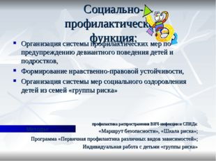 Социально- профилактическая функция: Организация системы профилактических мер