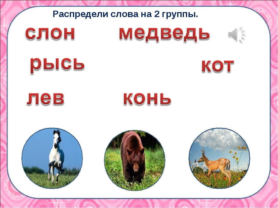 Распредели слова на 2 группы.