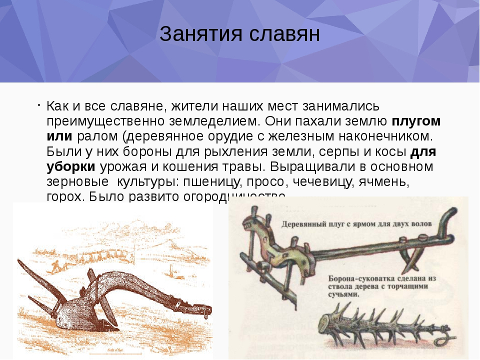 Занятия славян Как и все славяне, жители наших мест занимались преимущественн...