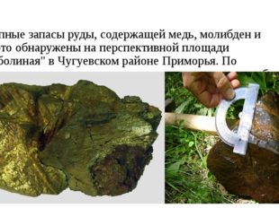 Крупные запасы руды, содержащей медь, молибден и золото обнаружены на перспек
