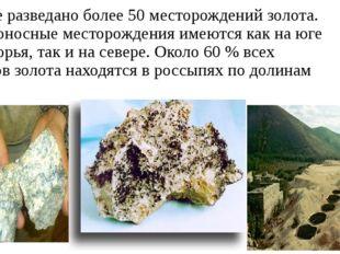 В крае разведано более 50 месторождений золота. Золотоносные месторождения им
