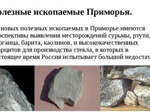 Полезные ископаемые Приморья. Из новых полезных ископаемых в Приморье имеются