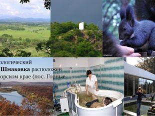 Бальнеологический курортШмаковкарасположен в Приморском крае (пос. Горные