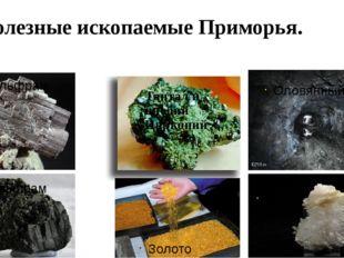 Полезные ископаемые Приморья. Золото Кварц Оловянный рудник Вольфрам Тантал и