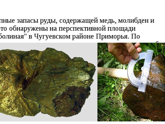 Крупные запасы руды, содержащей медь, молибден и золото обнаружены на перспек...