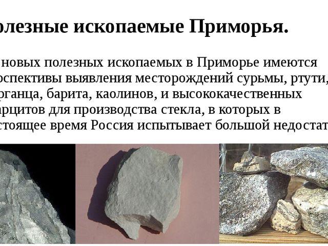 Полезные ископаемые Приморья. Из новых полезных ископаемых в Приморье имеются...