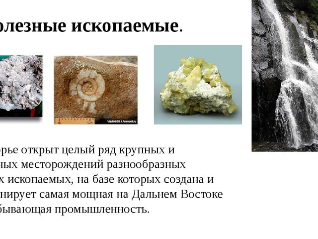 Полезные ископаемые. В Приморье открыт целый ряд крупных и уникальных месторо...